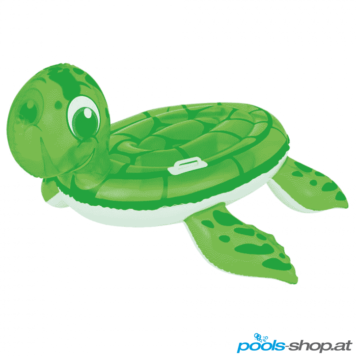 Schwimmtier Turtle