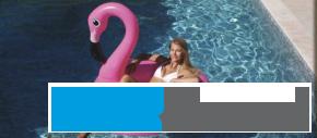 Schwimmtier Flamingo